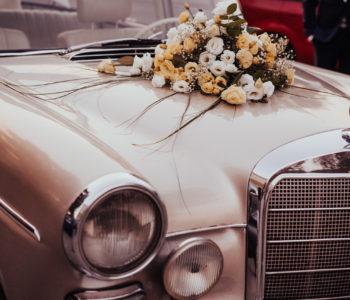 ślub wesele fotograf ślubny zdjęcia ślubne zgierz ozorków para młoda usc mąż i żona